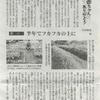 西日本新聞連載30話 草の活用法の続き
