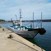 和歌山,串本の萩尾ー浜中渡船で5月の磯を満喫~オオシマ
