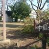 【古生物スポット紹介】中島公園