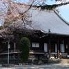 上野桜木界隈