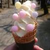 【福岡】食ってばかりの秋月花見ツーリング2019【毎年恒例】