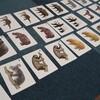 【お正月遊びに】どうぶつカードでマッチング&名前あてゲーム