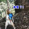 御岳山に登る 4 天狗岩