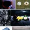「写実幻想絵画展」の瀬戸照
