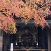 17番 もみじのころは京都にいる気分になる、九躰の仏像のお寺!