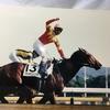 『競馬パネル:フサイチコンコルド「1996年:第63回東京優駿」』