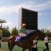 札幌競馬の思い出~2017夏