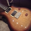 Paul Reed Smith SE Standard 24