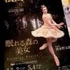 松山バレエ団「眠れる森の美女」