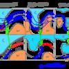 温帯低気圧のライフサイクル
