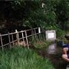 【多摩ランニングコース】 青柳崖線から流れる綺麗な水を辿って!!谷保矢川ママ下湧水ラン