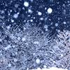 雨が雪に変わり~♪ もうすぐね