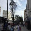 🇵🇪ペルー  -リマの市街地を散策-