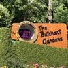 【カナダ】2日目-2 ビクトリアの美しい庭園ブッチャートガーデン