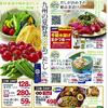企画 サブテーマ 九州の夏野菜×あごだし ヤオコー 6月23日号