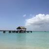 トバゴ島小旅行