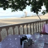 木陰で優雅な食事を!予約必至のレストランハウツリーラナイ