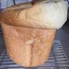 夏のパンは過発酵する…