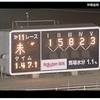 箱根駅伝感動でしたね・・・・。№1058
