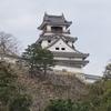 空から日本を見てみよう ― 高知市 ―