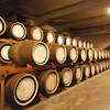 【山崎と白州】サントリーのウイスキー蒸溜所を見学しよう!