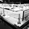 平日のボート乗り場2