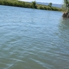ヤブ漕ぎ…不幸中の幸い(笑)2019 揖斐川のサツキマス