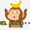 猿の国、がんばる・・・