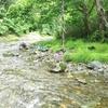 ペーチャン川で寄せ場探し