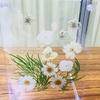 【誰でも出来る】100均の材料でお花が浮いて見えるフローティングフレームを作って見た。