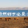 【自然好き必見】キルギス観光でナリンをおすすめしない理由がない