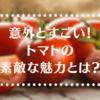トマトって実はすごい!?ダイエット中でも食べたい魅力とは