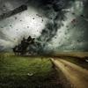 台風21号めっちゃ怖い!|これを機に防災用に買うものと対策まとめ