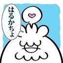 Y.log