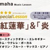【Special Lesson】フルートコースのご案内♩♩