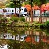 秋の白鷺池水鏡