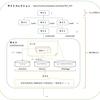 SharePoint Online サイトの構造について