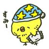 帰国 モントリオール→成田 直行便③
