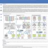 16S rRNA OTUピッキングと視覚化を行うデータベース  OTUX