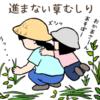 草むしりの姿勢は辛いよ  そして夏は暑くて長くはできない