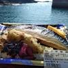 屋久島トッピーサバダバ 第6回 Aコープ尾之間vs.安房 鯖弁対決 岸壁でつつく鯖弁鳥を寄せ