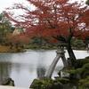 紅葉と徽軫灯籠