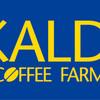 KALDI(カルディ)でのコーヒー豆の選び方を元スタッフが教えるよ