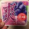 ロッテアイス:爽(巨峰・超!!!冷凍みかん果肉2倍)・北海道とうきぎモナカ・謎のスイカバー