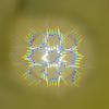 七色のフシギ模様〜2013年度三学期第三回 小学校科学実験