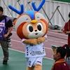 2018.9.15 名古屋グランパスvsV・ファーレン長崎