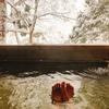 白布温泉 中屋別館不動閣 宿泊記 オリンピック風呂で有名な1人泊に優しい宿で雪見露天を満喫