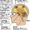 【閲覧注意】摘出した悪性脳腫瘍のリアル写真公開☆グロ系が苦手な人は閲覧をご遠慮ください><;