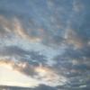 『麒麟がくる』23回 孤立する足利義輝 光秀と藤吉郎初対面