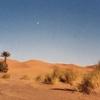毎日更新 バックトゥザ  1992年12月21日 ヨーロッパからサハラ砂漠 4か国6人バイクと車旅 32歳 タイムスリップブログ シンクロ 終活